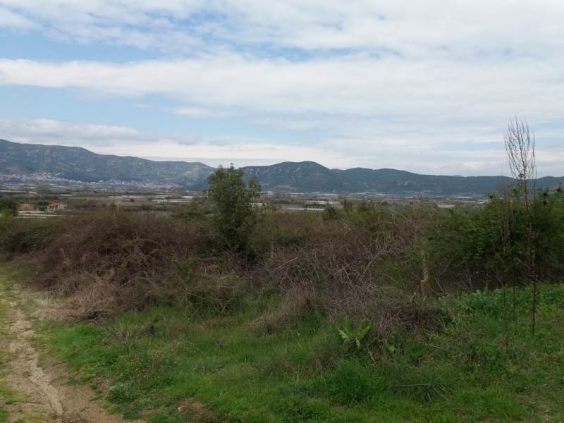 (For Sale) Land Agricultural Land  || Kavala/Eleftheres - 2.000 Sq.m, 12.000€