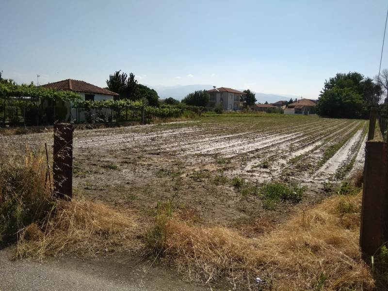 (For Sale) Land Plot || Serres/Irakleia - 1.740 Sq.m, 10.000€