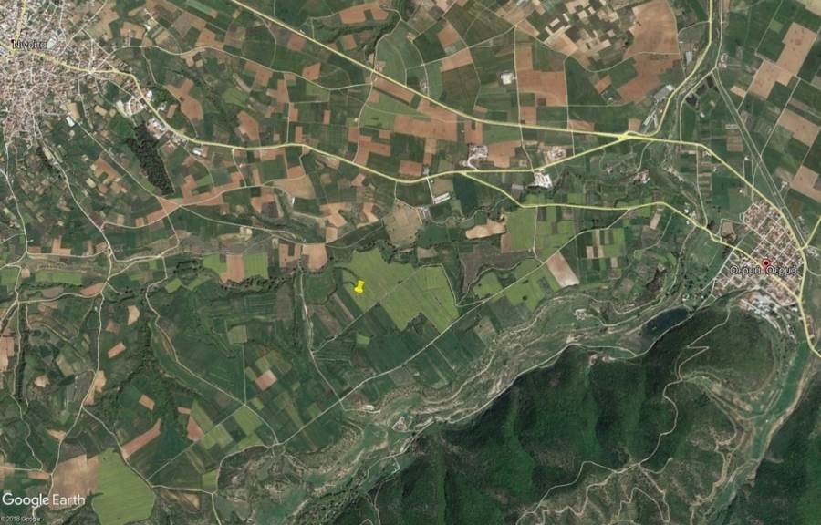 (For Sale) Land Agricultural Land  || Serres/Nigrita - 12.978 Sq.m, 9.000€