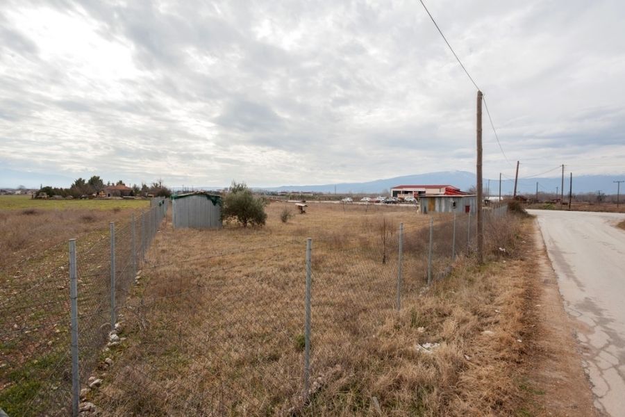 (For Sale) Land Plot || Drama/Drama - 3.000 Sq.m, 48.000€