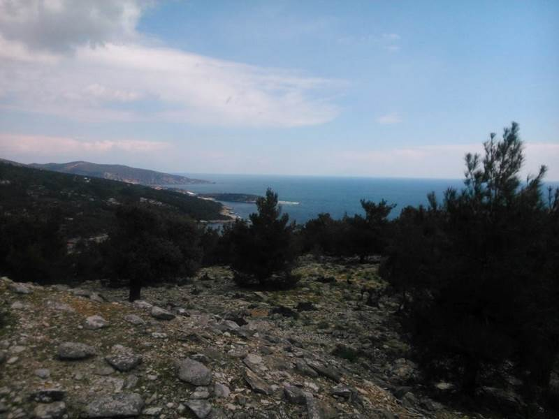 (For Sale) Land Agricultural Land  || Kavala/Thasos - 22.000 Sq.m, 525.000€